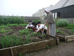 The gardener and apprentices tend the vegetables.