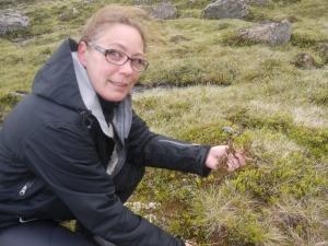 Claudia Schiller finds Icelandic Moss