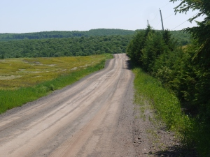The road that leads to Sugar Moon Farm takes the visitor back in time to the sugar bush.
