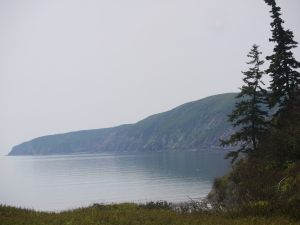 The Cape Chignecto Coast where Wild Caraway staff forage for food to add to their menu.