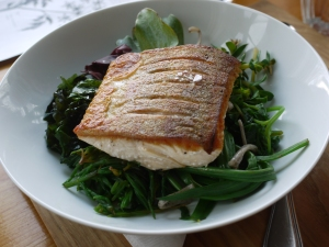 Arctic Char on a bed of seven sea greens and soba noodles.